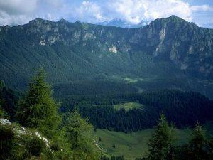 La foresta di Cajada e il monte Cirvoi