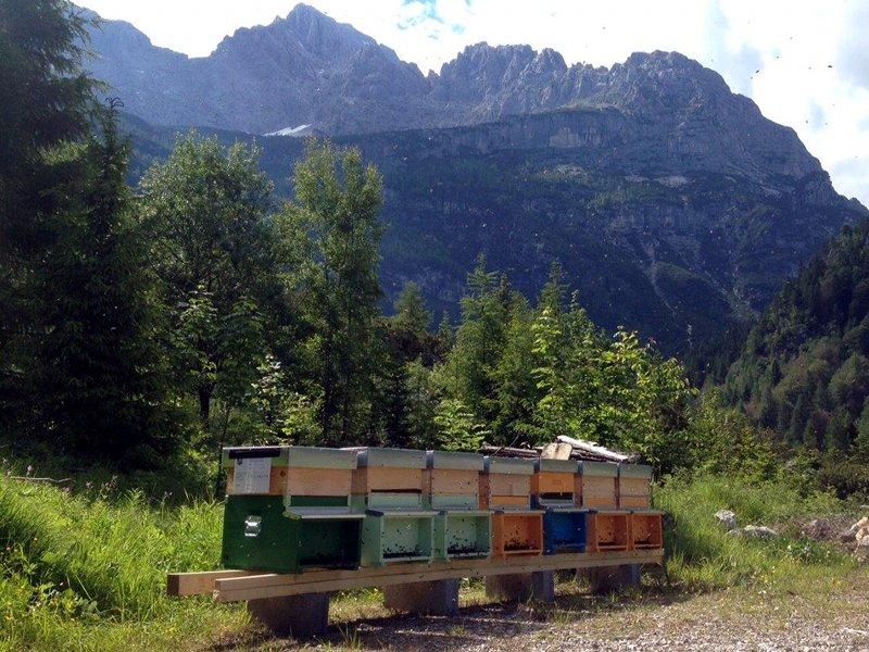 Az. Agricola La Gazola