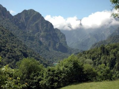 C17 - Suoli forestali del Parco Nazionale Dolomiti Bellunesi