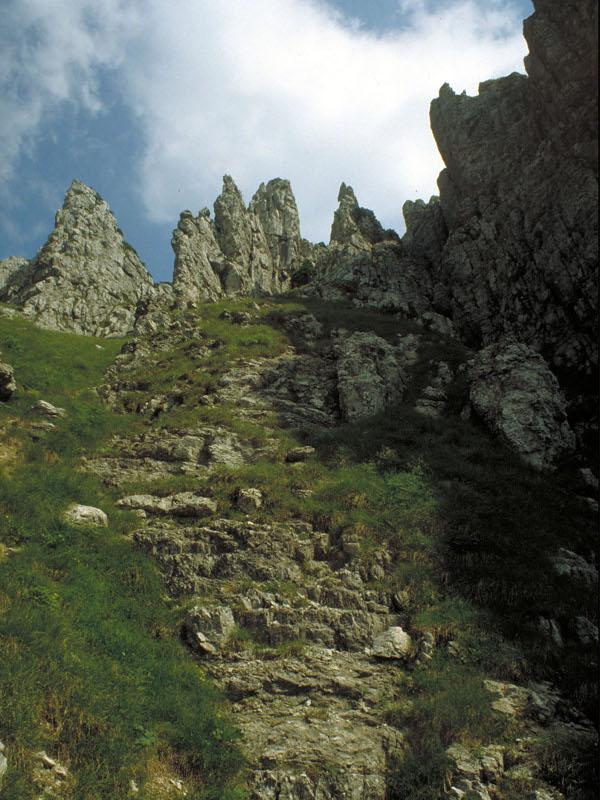 Sentier C.A.I. n° 815