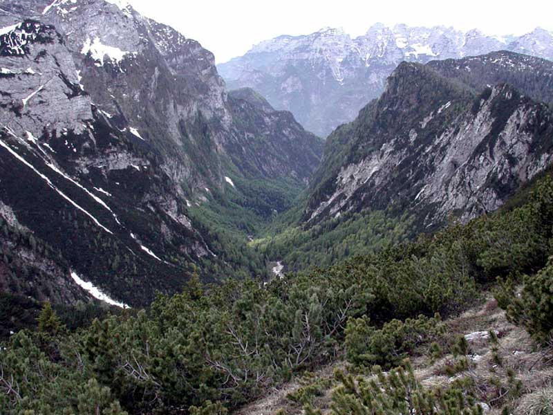 Sentier C.A.I. n° 546