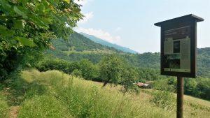 Tra boschi e prati sopra Norcen: l'anello di Trugno
