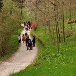Strade romane, vie di passaggio, alberi e storie a Polpet